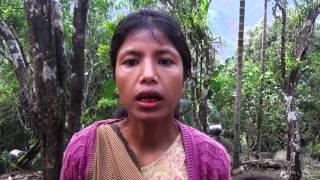 Ka Film Kait - Banana cultivation