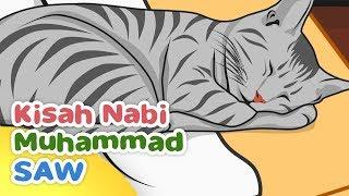 Kisah Nabi Muhammad SAW Keistimewaan Muezza Kucing Rasulullah - Kartun Anak Muslim Indonesia