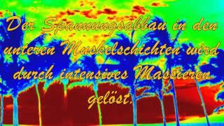 Lomi Lomi Nui Massage in Limburg a.d.Lahn..  :-)