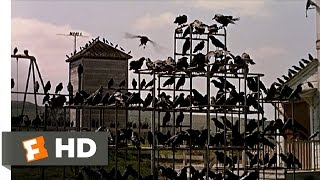 Crows on the Playground - The Birds (5/11) Movie CLIP (1963) HD