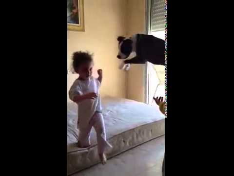 Xxx Mp4 Girls Teach Their Dog To Jump On The Bed Video 3gp Sex