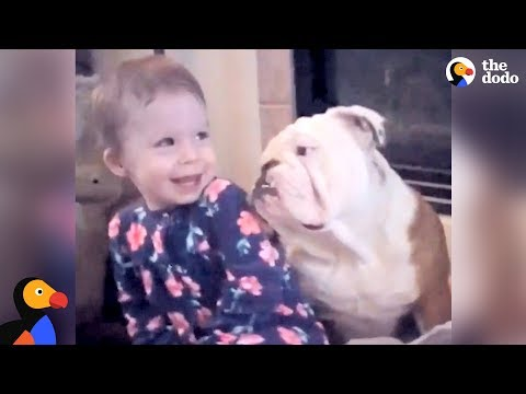 Xxx Mp4 Little Girl And Her Bulldog Are Helping Each Other Grow Up The Dodo 3gp Sex