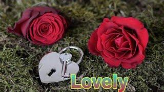 """""""Lovely"""" name Whatsapp status...   Main Phir Bhi Tumko chahungi female version   """