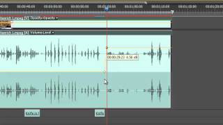 Audio Editing Basics for Premiere Pro & Soundbooth