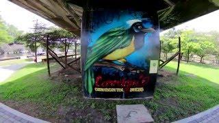 Los murales en las columnas del METRO de Medellín