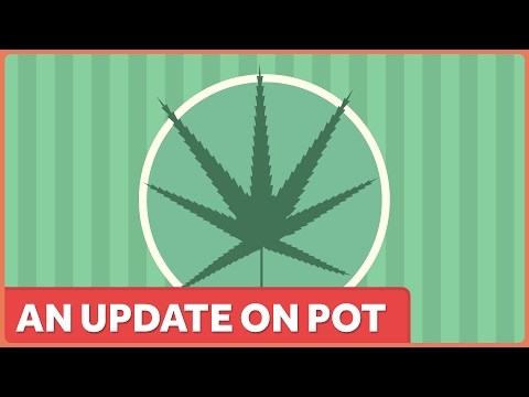 What We Know about Pot in 2017