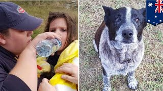 Little girl saved by dog that is deaf and partially blind - TomoNews
