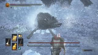 Custode del Campione & Lupo Custode - Dark Souls 3 - Nessun danno - NG+7
