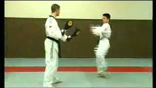 Coups de pieds et techniques de combat