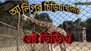 Alipur chiriakhana | আলিপুর চিড়িয়াখানা ||  kolkata alipur zoo video