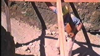 Ants 1977 (Dutch subs) VHS