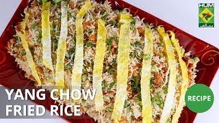 Yang Chow Fried Rice | Dawat | MasalaTV | Abida Baloch