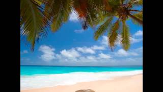 Kenny Chesney - Beer In Mexico.wmv