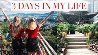 3 DAYS IN MY LIFE IN KOREA | SleepingBeauty