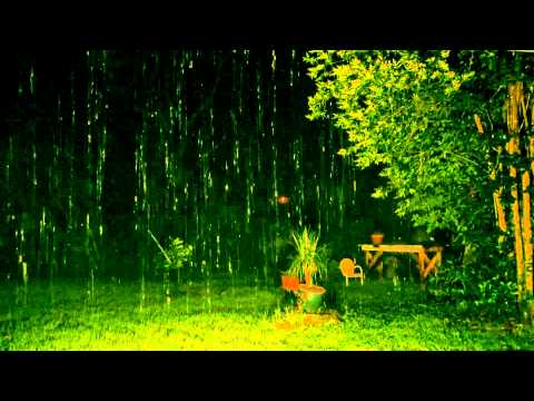 Rain Sounds with no Music 90mins Sleep Sounds