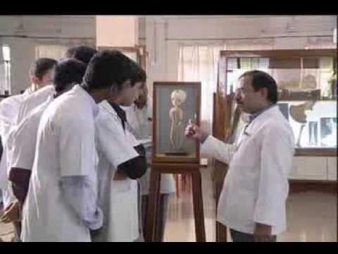 Xxx Mp4 Jawaharlal Nehru Medical College K L E University 3gp Sex