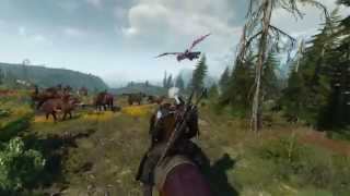 The Witcher 3: Wild Hunt - Official Gameplay Trailer - 1080p