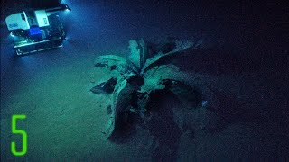 5 Deep Sea Anomalies That Can