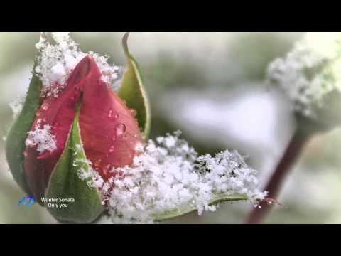 Winter Sonata(Relaxing music violin and piano)