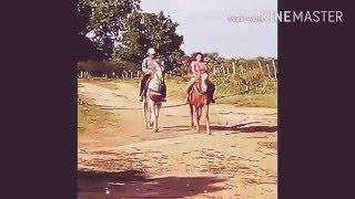 Aprendendo a cavalgar