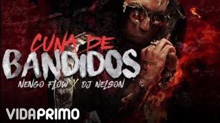 Ñengo Flow & DJ Nelson - Cuna de Bandidos [Official Audio]