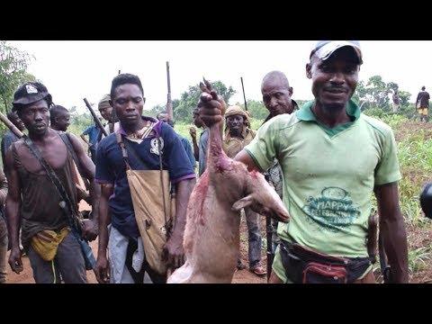 Xxx Mp4 How To HUNT Wild Animals In Africa 3gp Sex