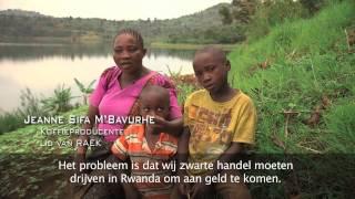 Reportage Itineris fairtradekoffie uit Kivu