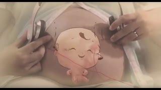 Anne Karnında Bebek Gelişimi Animasyon  I  Baby Development Animated Film