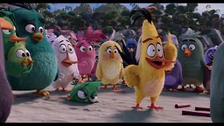 Angry Birds (2016) - Hilarious Moments