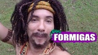 MUSTAFARY (MARCO LUQUE) -- FORMIGA