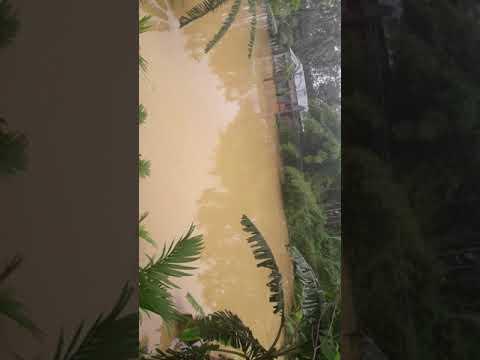 Xxx Mp4 Tripura News Today Flad Of Kumarghat Unakoti Tripura 3gp Sex