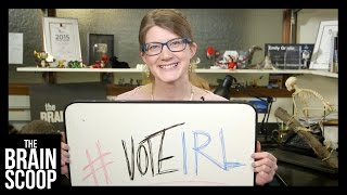 Get out and #voteIRL - for SCIENCE.