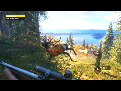 Xxx Mp4 Going Hunting With Speedy This Game Is Beautiful TheHunter Call Of The Wild 3gp Sex