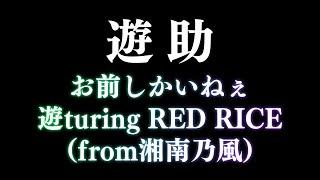 遊助/お前しかいねぇ遊turing RED RICE(from湘南乃風)