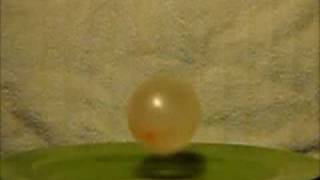 Slow Motion - Water Balloon Bounce