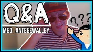 Q&A -