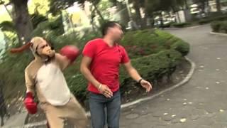 Telehit El Show de Oscar Burgos - Sketch Técnicas de Boxeo