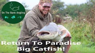 """Big Catfish Fishing - """"A Return To Paradise"""" - Anglers Paradise"""