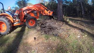 MX4800 Jenkins Puller, Fence Line and Shrub Clean up St. Johns County