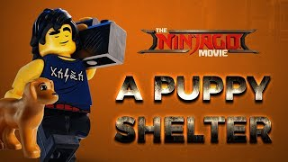 Cole - Lego Ninjago - builds a puppy shelter