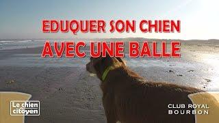 Royal Bourbon.7 : Eduquer son chien en jouant avec la balle ORKA
