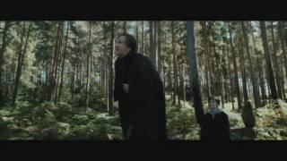 Harry Potter und der Penner von Alcatraz Teil 7