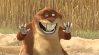 Funny Animal animation  Tubidy IM