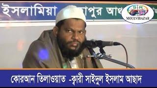 Quraan Tilawat   Kari Saidul Islam Asad