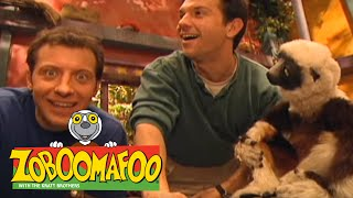 Zoboomafoo 115 - Fling (Full Episode)