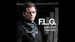 F.L.G. - Amplifier