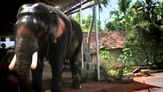 Thirunakkara Sivan Intro Song