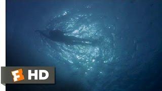 Chrissie's Last Swim - Jaws (1/10) Movie CLIP (1975) HD