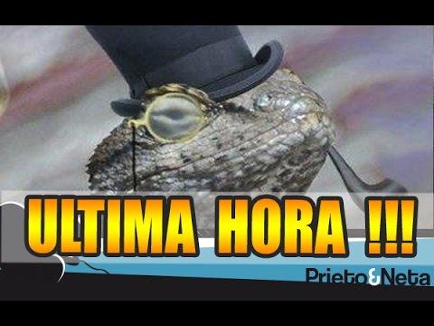 ULTIMA HORA || Lizard Squad :Se ríen del creador de Mega !!!
