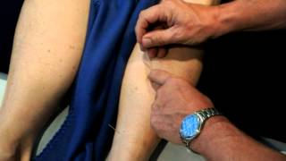 Master Tung's San Huang (Three Emperors) - Acupuncture CEU Online